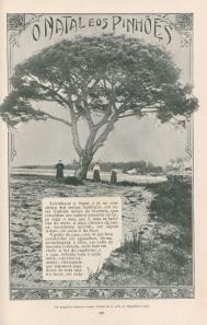 Natal1912b