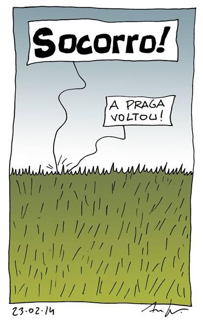 Antero138