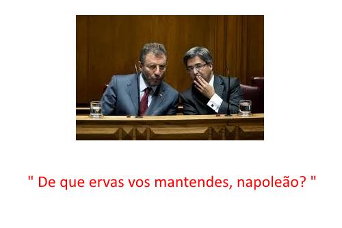 erva_daninha